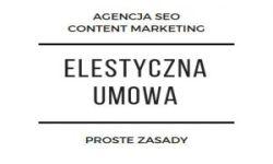 seo stron wrocław primero